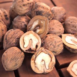 ◆こちらは殻つきクルミです。殻つきクルミのメリットは、なんといっても腐らない。すぐに大量に使わない方...