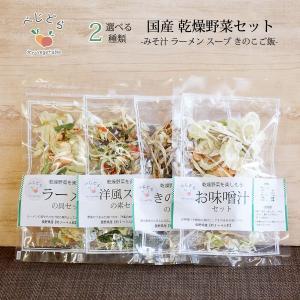 送料無料 1000円 ポッキリ 乾燥野菜 国産 乾燥野菜ミックス 無添加 選べる 2点 セット|cocodani