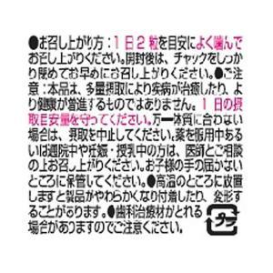 UHA味覚糖/UHAグミサプリ 鉄&葉酸 20日分 40粒|cocodecow|04