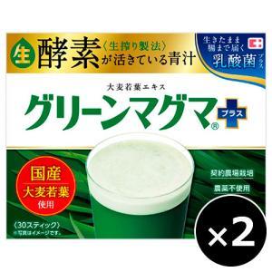 グリーンマグマプラス 3g×30スティック×2個セット|cocokarafine