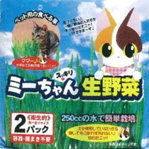 イデシギョー ミーちゃんスッキリ生野菜 2パック|cocokarafine