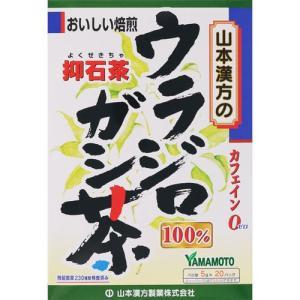 100% ウラジロガシ茶  山本漢方 5g×20袋|cocokarafine