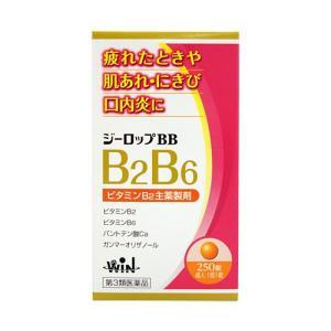 ジーロップBB 250錠[第3類医薬品]|cocokarafine