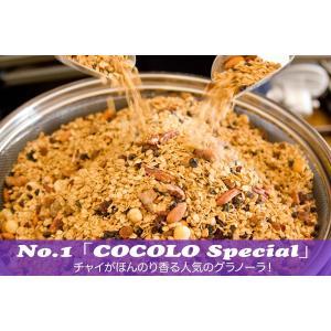 No.1 Chai  Special (チャイスペシャル) cocolokyoto