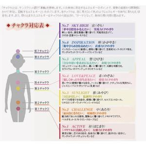 サーキュエッセンス No.2(中 あたり)5ml|coconatural|03