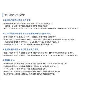 安心やさい 箱タイプ (1g×25包)×2個組|coconatural|02