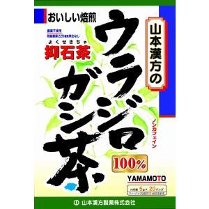 山本漢方 ウラシロガシ茶100% 5g×20袋...の関連商品7