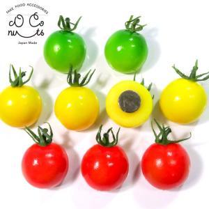 食べちゃいそうなミニトマト 食品サンプル マグネット|coconuts-ac