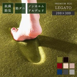 3畳 低反発 ラグマット ラグ カーペット 200×300 洗える ウォッシャブル オールシーズン 防音|cocosa