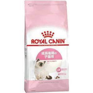 ロイヤルカナン FHN キトン 子猫用 2kg cocoshopjapanstore