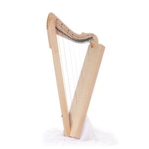 Fullsicle Harp / フルシクル・ハープ / キャリングケース付き