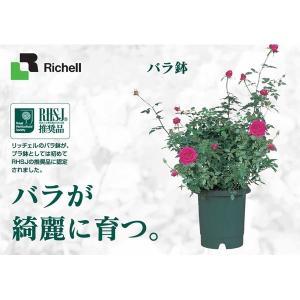 リッチェル(Richell):バラ鉢 6号 ダ...の詳細画像1