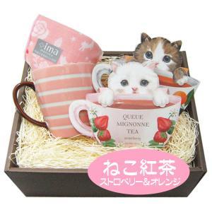 敬老の日 ティーセット 人気のボーダーマグカップと、かわいい子猫ちゃんがデザインされたパッケージのテ...