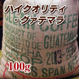 ハイクォリティ・グァテマラ 100g 焙煎コーヒー豆 送料無...