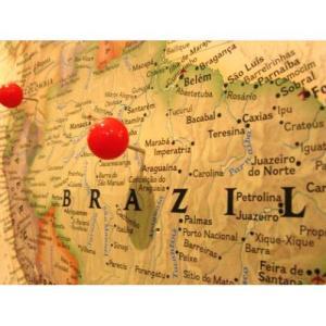 送料無料 ブラジル 400g 40杯〜55杯 コーヒー豆/ナッツのような、甘く香ばしい華やかな香り  ブラジル・サントス・No.2・ス|coffeebaka