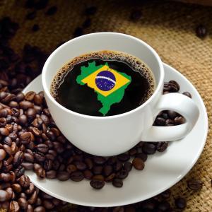 【CP】 ブラジル プレミアムショコラ (100g)  【コーヒー豆 合計500gの注文でクリックポスト送料無料】|coffeemeetsbagels