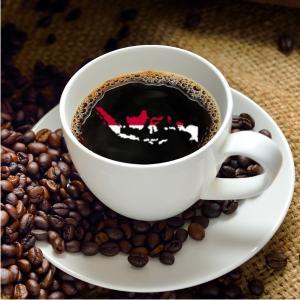 【CP】 インドネシア マンデリン セパカト (100g)   【コーヒー豆 合計500gの注文でクリックポスト送料無料】 coffeemeetsbagels