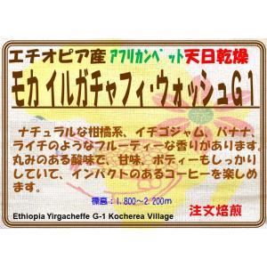 イルガチャフィ ベレカG1 200g|coffeesaikoubou