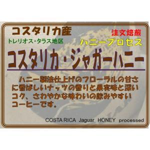 コスタリカ ジャガーハニー ハニープロセス製法  200g 限定入荷品|coffeesaikoubou