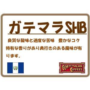 グァテマラ SHB 200g|coffeesaikoubou