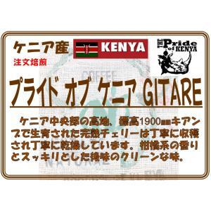 ケニアバラグウィ 農協 グアマファ クトリー限定入荷品|coffeesaikoubou