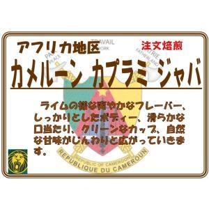 カメルーン カプラミ・ジャバ 200g 限定入荷品|coffeesaikoubou