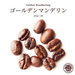 コーヒー豆 ゴールデン マンデリン 200g × 1袋 | インドネシア スマトラ式 コーヒー 珈琲 自家焙煎 こだわり 生豆 粉 プレミアム 贅沢 本格 挽きたて|coffeeyabu