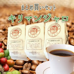 キリマンジャロセット(200g×3袋)|coffeeyabu
