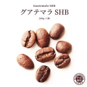 コーヒー豆 グアテマラSHB 200g x 1袋 | グアテマラ ガテマラ コーヒー 珈琲 やぶ珈琲 自家焙煎 こだわり 生豆 粉 贅沢 本格 挽き立て|coffeeyabu
