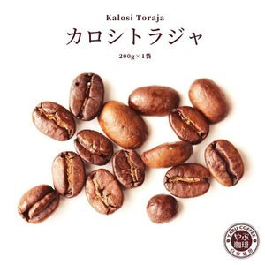 コーヒー豆 カロシトラジャ 200g x 1袋 | インドネシア コーヒー 珈琲 やぶ珈琲 自家焙煎 こだわり 生豆 粉 贅沢 本格 挽き立て|coffeeyabu