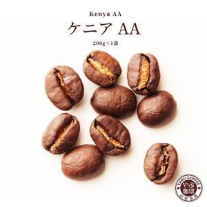 コーヒー豆 ケニアAA 200g × 1袋 | 苦味 コク コーヒー 珈琲 自家焙煎 こだわり 生豆 粉 プレミアム 香り 焙煎 挽き立て 本格 種類 専門店 贅沢|coffeeyabu