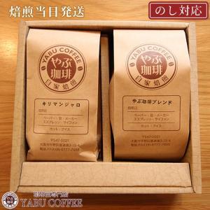 コーヒー豆ギフト 選べる2袋 御中元 御歳暮 内祝|coffeeyabu