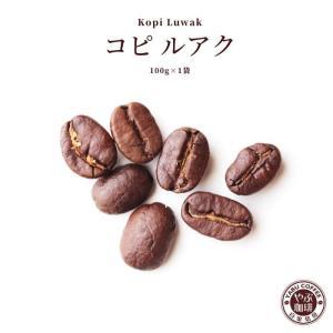 コピルアク コーヒー豆 100g | コーヒー 珈琲 やぶ珈琲 ジャコウネコ インドネシア コピルアック 希少 本物 生豆 スペシャルティ 自家焙煎 こだわり|coffeeyabu