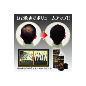 増毛スプレー 薄毛対策 髪の毛 ボリューム 厚生省認可  ヘ...