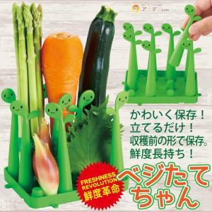 野菜 保存 新鮮 エコ 人参 きゅうり 大葉 鮮度保持 冷蔵庫 野菜室 ベジたてちゃん「メール便不可」コジット|cogit