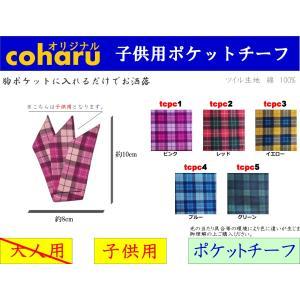 ポケットチーフ ハンカチーフ 4 子供用 キッズ|coharu