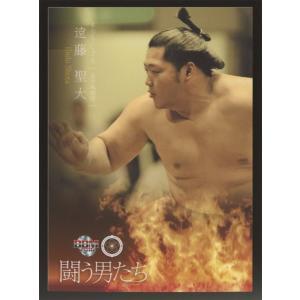 遠藤聖大 2016 大相撲カード 彩 レギュラーカード 闘う男たち #72