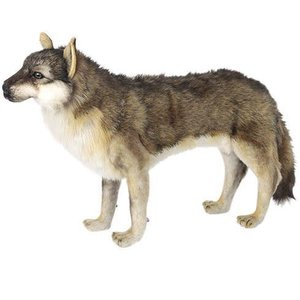ハンサ【HANSA】ぬいぐるみ オオカミ60cm collecolle