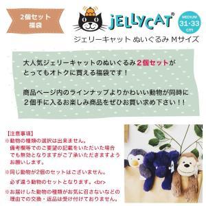 jellycat ぬいぐるみ  福袋 2個セット jellycat ぬいぐるみ ジェリーキャット バシュフル bashful M|collectioncasestore|02