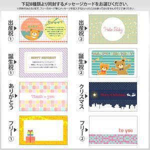 ジェリーキャット ぬいぐるみ jellycat Mサイズ collectioncasestore 09