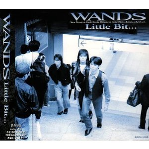 Little Bit・・・ /WANDS(管理番号:535040)|collectionmall