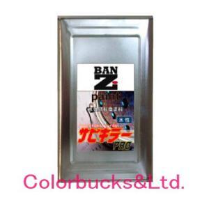 サビキラープロ 16kg シルバー 水性錆転換塗料 BAN-ZI |colorbucks
