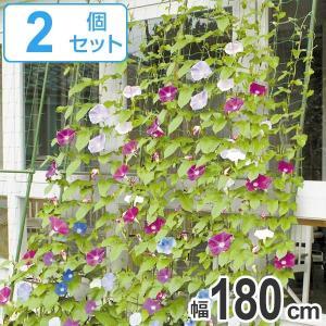 緑のカーテン 伸縮ワイド 幅180cm×高さ1.6~3m 2個セット