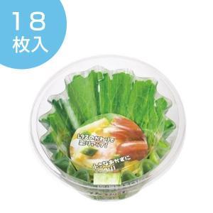 お弁当カップ おかずカップ 日本製 レタスそっくりケース 小玉 18枚入り ( 電子レンジ対応 おべんとケース お弁当グッズ )|colorfulbox