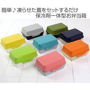 【ポイント最大26倍】お弁当箱 ジェルクール デリ 1段 500ml ドーム型 保冷剤一体型 ( 弁当箱 ランチボックス 日本製 )|colorfulbox|02
