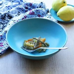 ボウル 21cm Blueシリーズ 陶器 食器 笠間焼 日本製 ( 食洗機対応 お皿 電子レンジ対応 皿 カレー皿 パスタ皿 )|colorfulbox