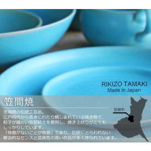 ボウル 21cm Blueシリーズ 陶器 食器 笠間焼 日本製 ( 食洗機対応 お皿 電子レンジ対応 皿 カレー皿 パスタ皿 )|colorfulbox|05