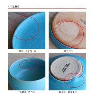 ボウル 21cm Blueシリーズ 陶器 食器 笠間焼 日本製 ( 食洗機対応 お皿 電子レンジ対応 皿 カレー皿 パスタ皿 )|colorfulbox|09