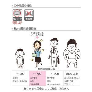 保温弁当箱 オクタス ステンレスランチジャー 580ml ステンレス製 ( ランチジャー お弁当箱 ランチボックス )|colorfulbox|06