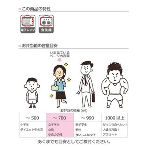 【ポイント最大26倍】弁当箱 スリムランチ Border 660ml ( お弁当箱 日本製 電子レンジ対応 )|colorfulbox|08